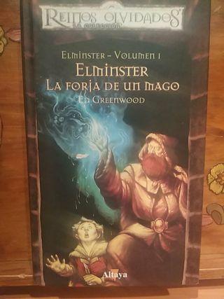 Elminster La forja de un mago