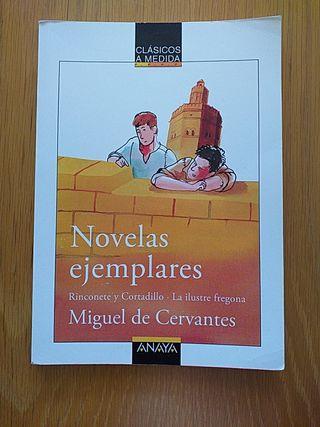 Novelas ejemplares. Editorial Anaya