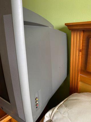 TELEVISIÓN CON CULO