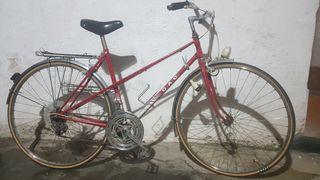 Bicicleta paseo adulto clásica GAC