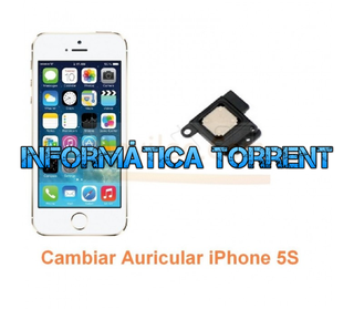 Cambiar Auricular IPhone 5S