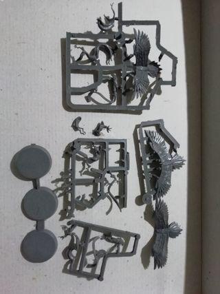 AoS - Hechizos + raptors (3) + sequitors (6)