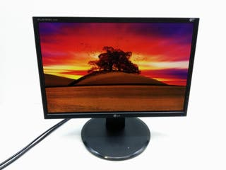 """Monitor LCD LG L194WS 19"""" B 104370"""