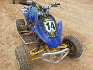 quad gas gas wild hp 250