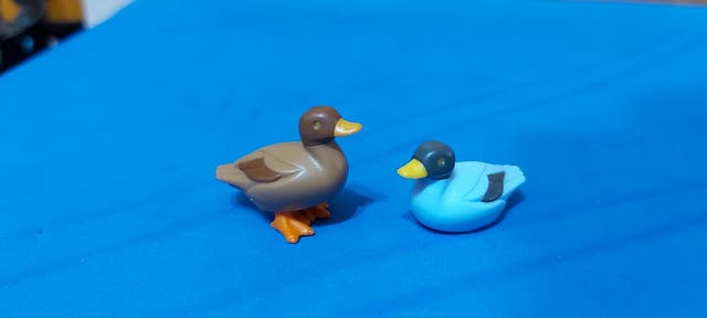 Playmobil Patos