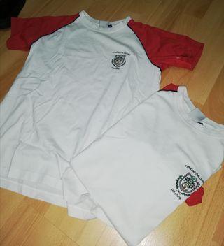 Camisetas Uniforme Colegio Rosario Moreno T-14