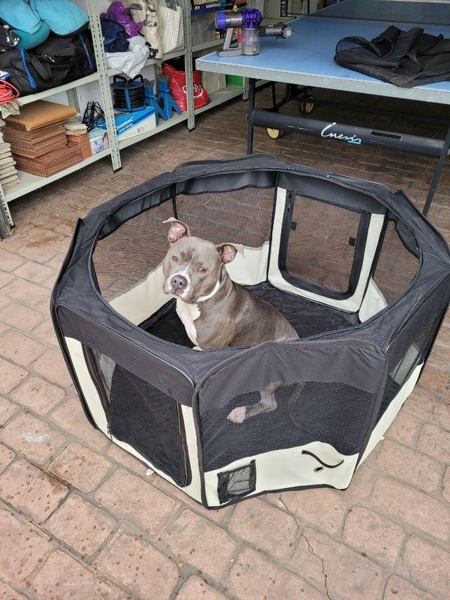 Parque Infantil o de perros