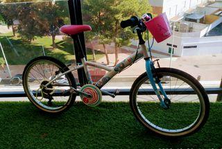 Bicicleta niña 20'