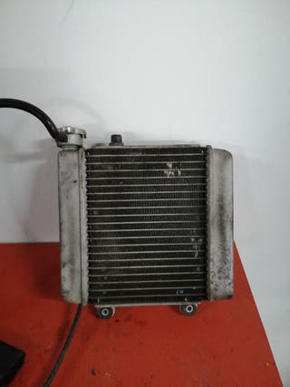 Radiador agua Honda Pantheon 125