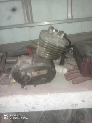 motor malaguiti grizzly 12