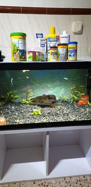 acuario 150l