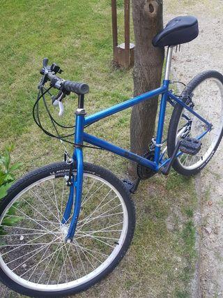 Bicicleta clasica fenomenal estado