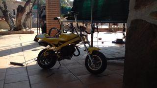 mini moto minimoto