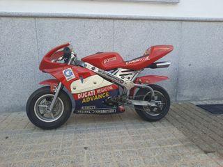 mini moto GPS competicion