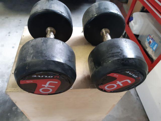 mancuernas 40kg