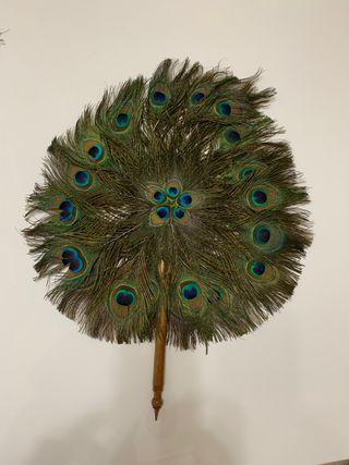 Abanico/ pai pai de plumas de paco real autenticas
