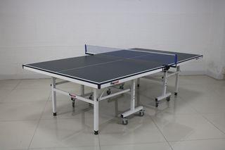 Mesa de Ping Pong interior Raycool Legend 450