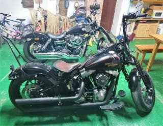 Harley Davidson Cross Bones 08