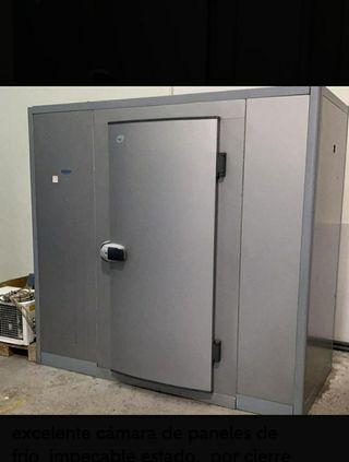 Cámara de paneles congelación profesional