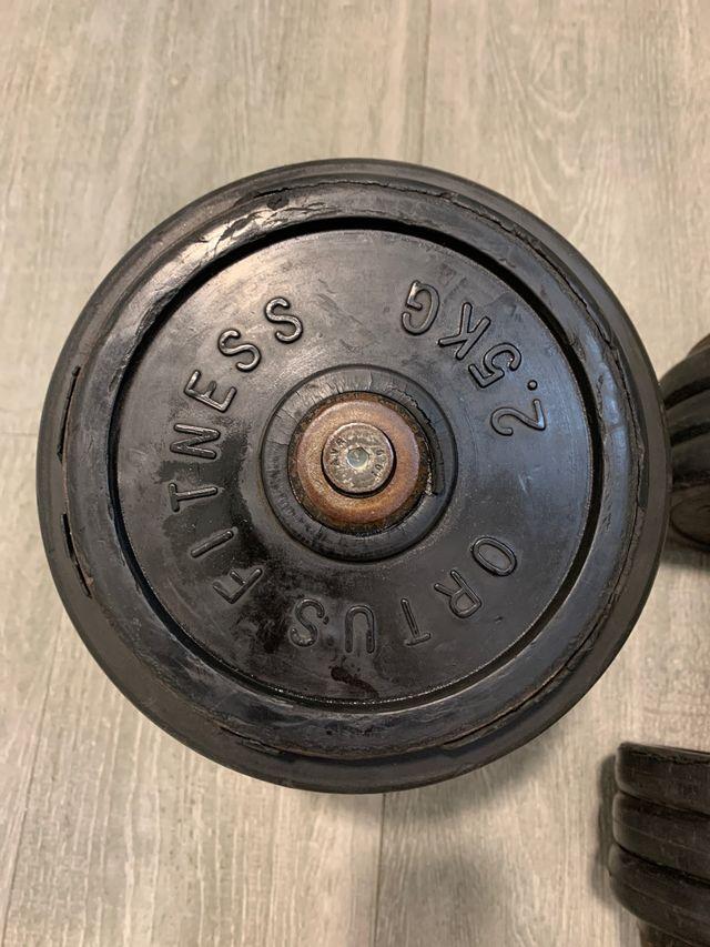 Pesas mancuernas gimnasio 27,5 KG