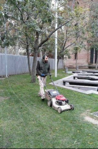 Jardinero profesional económico