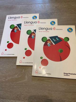 Llengua 6è de primària, Projecte la Casa del Saber