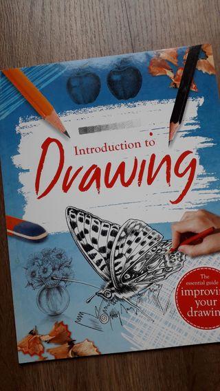 Introducción al dibujo (inglés)