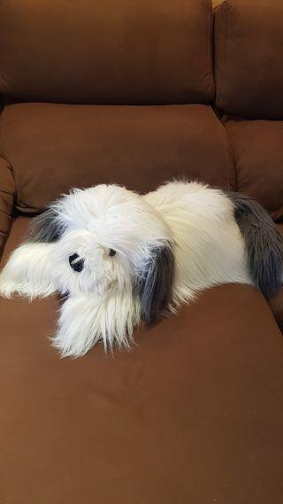 Perro Peluche grande