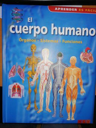 El cuerpo humano. Órganos Sistemas Funciones