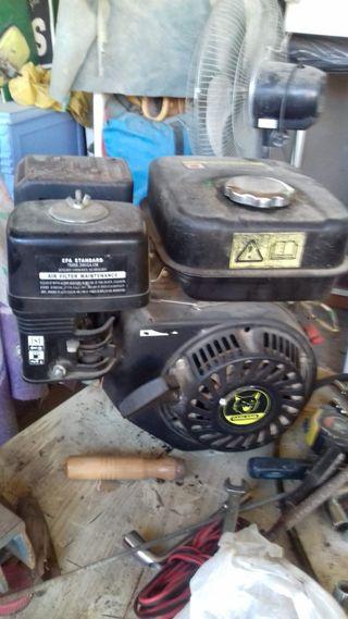 Motor Biotrituradora 6cv y medio
