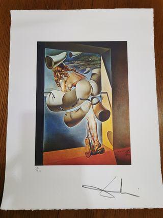 Reproducción de Salvador Dalí