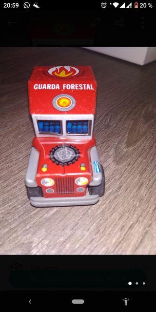 patrulla forestal payva