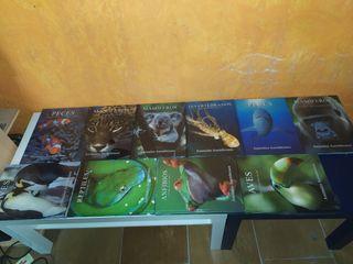 colección de libros de animales