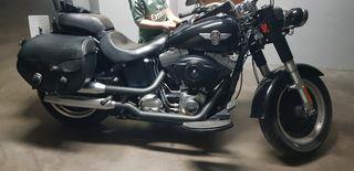 espectacular Harley davidson