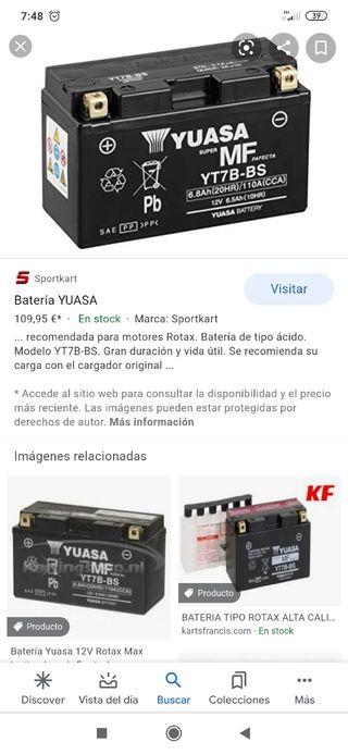 bateria yuasa rotax