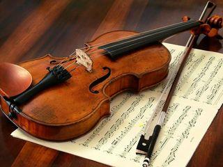 ¡Diviértete aprendiendo a tocar el violín!