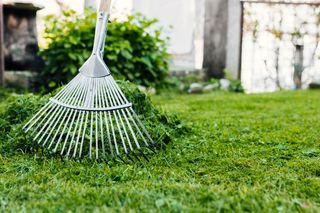 Limpieza y Mantenimientos de Parcelas y Jardines