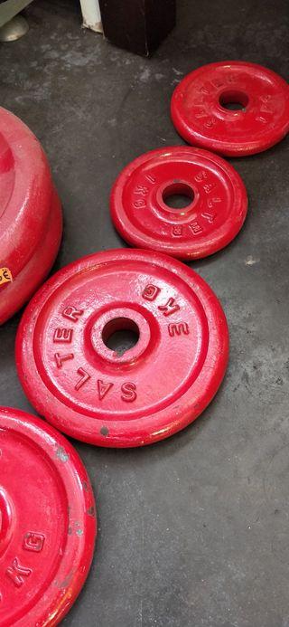 Conjunto de mancuernas pesas Salter