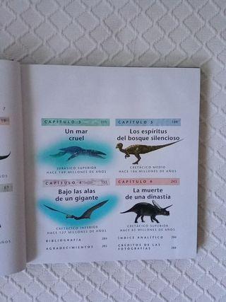Camino entre dinosaurios