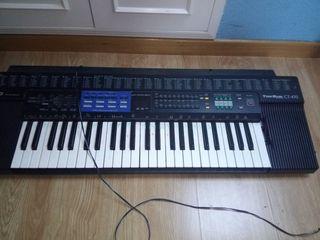 Teclado Piano Organo Casio