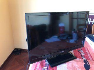 "TV Engel 23"""