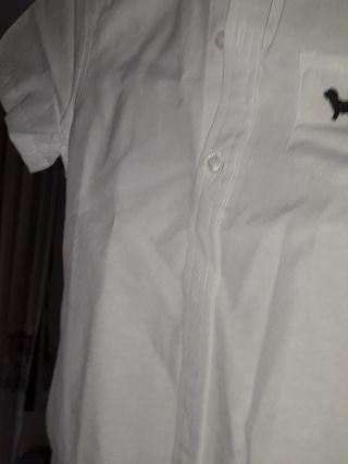 camisa niño manga corta