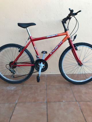 """Bicicleta 24 y 20"""""""
