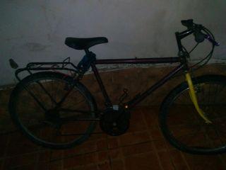vicicleta con porta equipo
