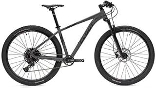 bicicleta 29 pulgada