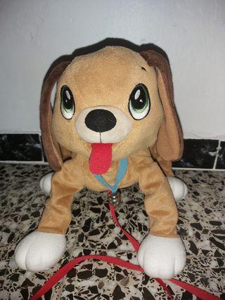 Perro Peppy Pups