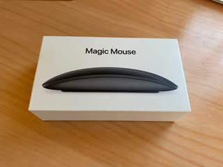 Magic Mouse 2 Gris Espacial