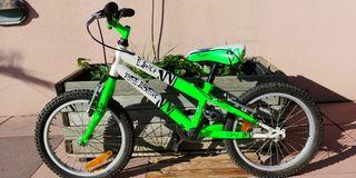 bicicleta infantil Peliser Lion