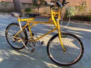 Bicicleta Tandem paralela