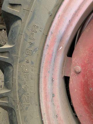 Neumáticos tractor Ebro Súper 55 - 160